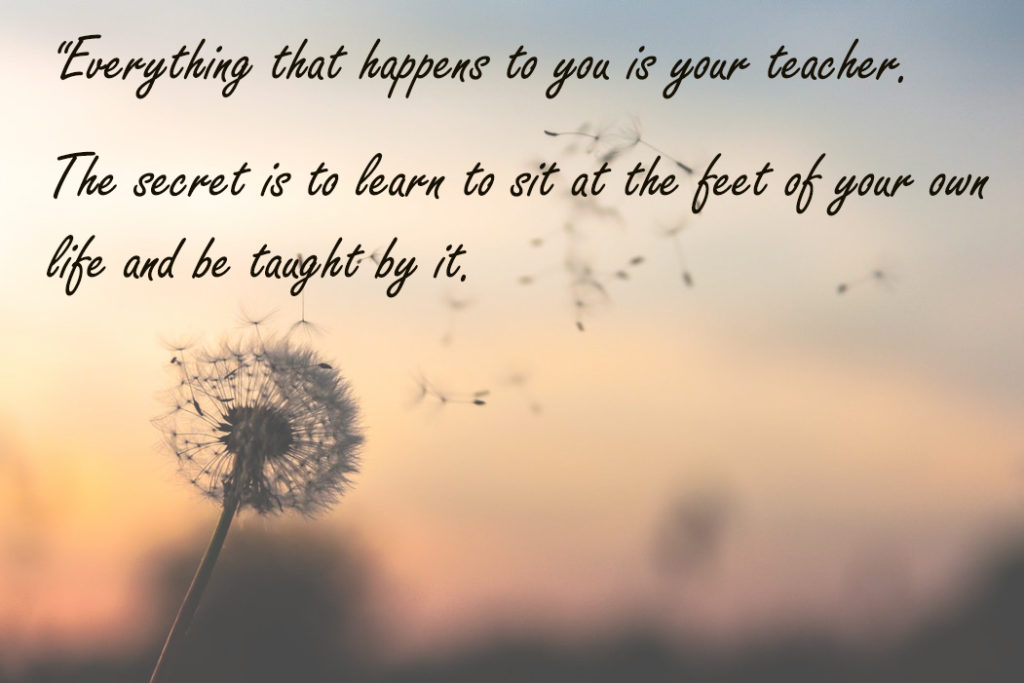 """Everything that happens to you is your teacher. The secret is to learn to sit at the feet of your own life and be taught by it."
